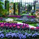 五国の庭2