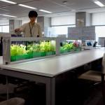 小型植物工場01